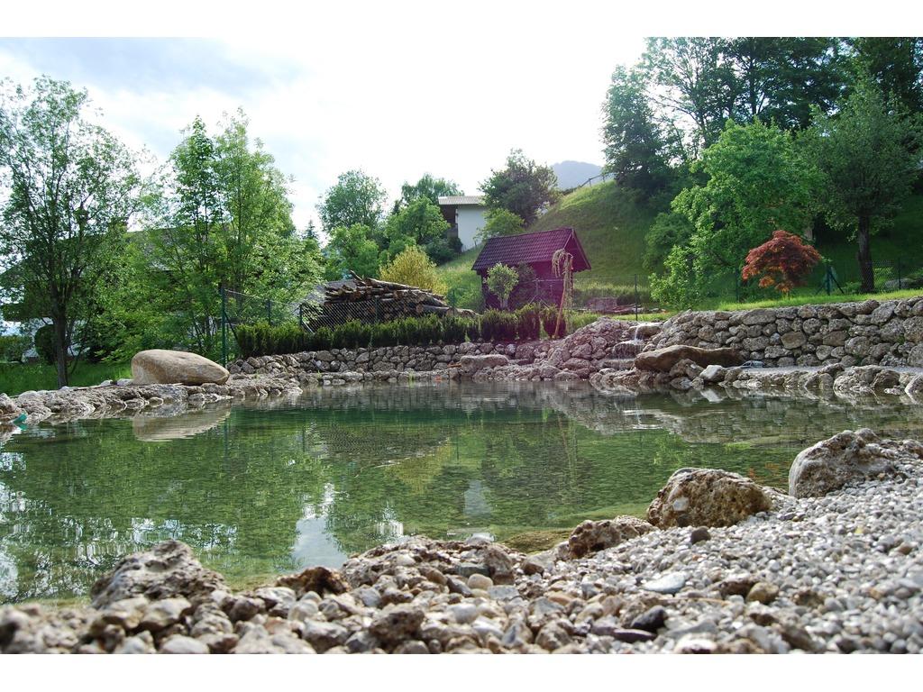 Schwimmteich biotop gartengestaltung gruber werner for Garten schwimmteich